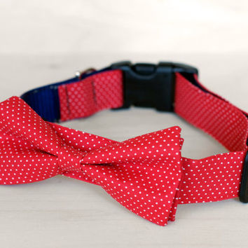 Red Dot Bow Tie Dog Collar by TheRoverBoutique on Etsy