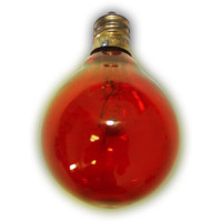 Global Amber Light Bulbs (12 Bulbs)