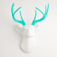 The Oleg - White W/ Turquoise Antlers Resin Deer Head- Stag Resin White Faux Taxidermy