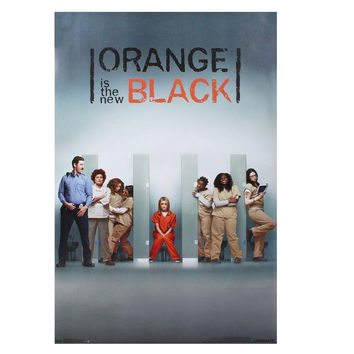 Orange is the New Black - One Sheet 22x34 Standard Wall Art Poster