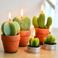 """THE CACTUS FAMILY"" BIG CANDLE"