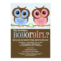 Cutie Owls Gender Reveal Party Invitation from Zazzle.com