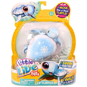 Little live Pets Lil Turtle Single Pack - Powder