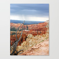 Bryce Canyon by kathrinmay
