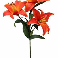 "Real Touch Lily Spray in Two Tone Orange34"" Tall x 5.5"" Diameter"