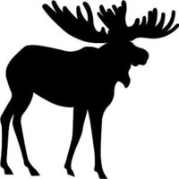 "Moose Decal 3.75""x3.75"" select your color!  vinyl sticker"