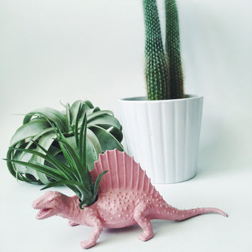 Small Pastel Pink Spinosaurus Dinosaur Planter Air Plant; Dinosaur Planter; Desk Accessory; Home Decor; Unique Gift Idea; Planter; Air Plant