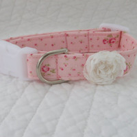 Shabby Chic Pink Roses  Dog Collar
