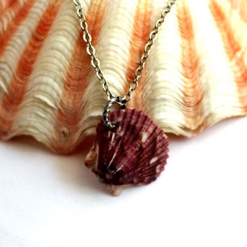 Natural Shell Necklace, Scallop Seashell Pendant, Nautical Beach Eco-Friendly Jewelry by Hendywood