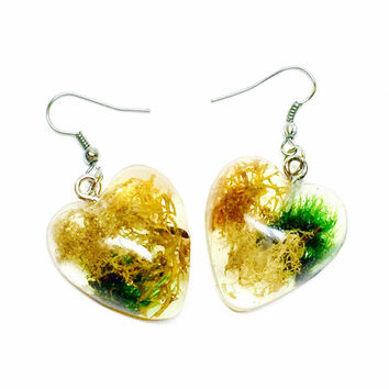 Moss Earrings, Resin Jewelry, Clear Resin Moss, Botanical Jewelry, Woodland Earrings, Real Preserved Plants, Heart Earrings, Clear Earrings