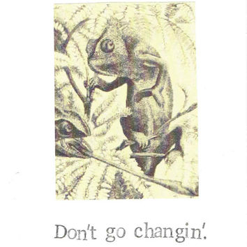Don't Go Changing Chameleon Card | Happy Birthday Funny Lizard Nature Humor Nerdy Vintage For Him For Her Men Women Valentine's Day Love