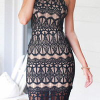 Black Halter Neckline Criss Cross Back Lace Bodycon Dress