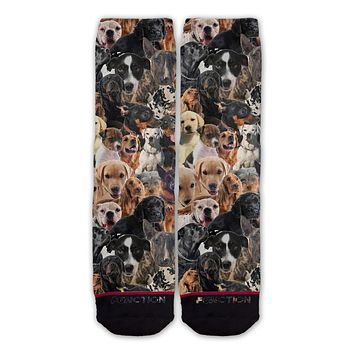 Function - Dogs All Over Fashion Socks