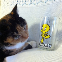 Tweety Bird Glass 1976 Warner Brothers Vintage Looney Tunes Collectible Drinkware I Tawt I Taw a Putty Tat! I Did! I Did! Tweety Cartoon Cup