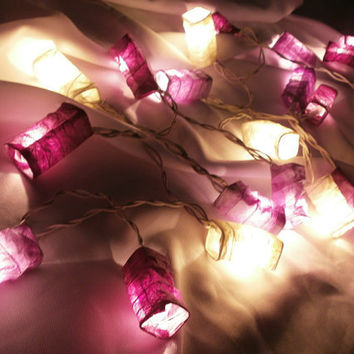 Violet Set Chinese Paper Lantern String Lights Home Decorate Indoor and Outdoor patio wedding (20 Balls/Set)