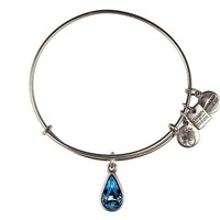Alex and Ani Living Water Charm Bangle