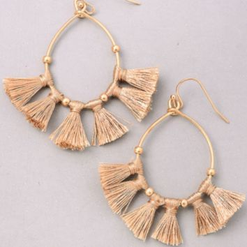 Tassel hoop earrings-rose