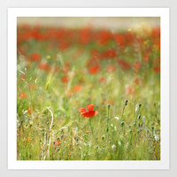 the first poppy of the field Art Print by Guido Montañés