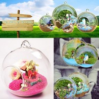 Clear Round Hanging Glass Vase Bottle Terrarium Hydroponic Planter Pot Flower DIY Home Table Garden Decor