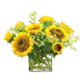 Sunflower/Queen Anne's Lace in Glass Vase ~ Yellow