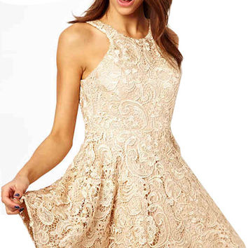 Nude Cut Out Back Lace Dress