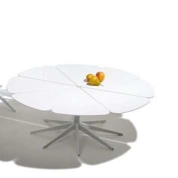 Knoll Schultz Petal Coffee Table