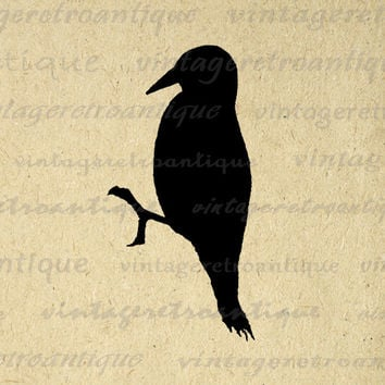 Printable Digital Bird Silhouette Graphic Image Download Vintage Clip Art for Transfers Making Prints etc HQ 300dpi No.3280