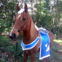 Flying Horse Costume -- White and Blue Pegasus Outfit for Horse or Pony -- Pegasus, Equine Angel Costume