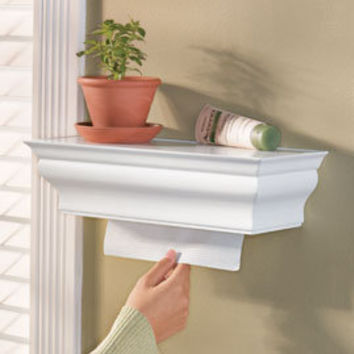 Hidden Paper Towel Dispenser Shelf | Solutions