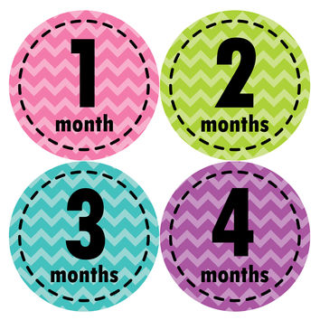 Baby Girl Monthly Baby Stickers Style #260