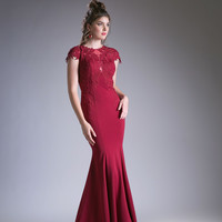 Long Mother of the Bride Dress Formal Gown Plus Size