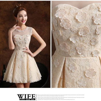 Annual fall/winter evening dress bride and the new 2015 short bridesmaid dresses female sisters dress champagne engagement SK2028 1924745