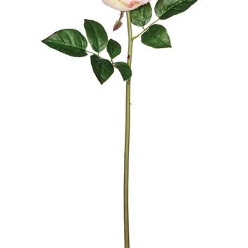 """Silk Cabbage Rose in Light Pink - 22"""" Tall"""