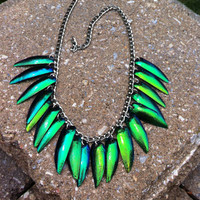 Iridescent Beetle Wing - Fully Loaded - Taxidermy - Bug - Necklace