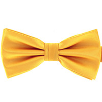 Tok Tok Designs Pre-Tied Bow Tie for Men & Teenagers (B10)