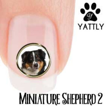 Miniature American Shepherd 2 Portrait Nail Art ( NOW 50 % MORE FREE)