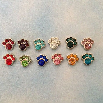 Floating charm birthstone paws for memory living locket