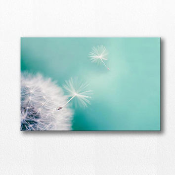 Dandelion wall art dandelion canvas wrap 12x12 20x30 fine art photography canvas print dandelion large canvas nature photography canvas wrap