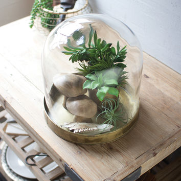 Glass Cloche with Aged Brass Finish Metal Base