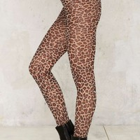 The Cat's Meow Leopard Tights
