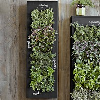 Rectangular Chalkboard Wall Planter