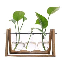 Plant Terrarium with Wooden Stand (1-3 SIZES)