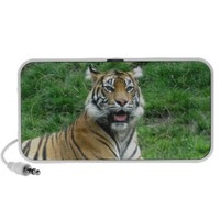 Tiger Travel Speakers