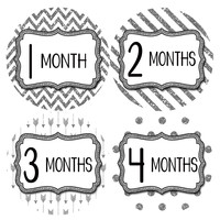 Baby Girl Monthly Milestone Baby Stickers Style #805