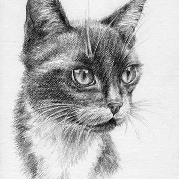 CUSTOM CAT PORTRAIT, Original graphite pencil drawing from photos, Pet portrait, Animal Art on request, Black & White, Personalised memorial