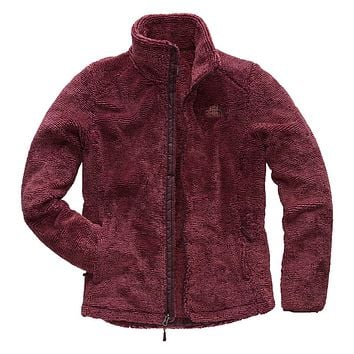 Women's Osito 2 Full Zip Jacket in Fig and Faded Rose Stripe by The North Face