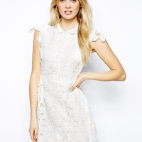 Arrogant Cat London Embroidered Skater Dress with Collar
