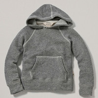 Gray Organic Terry Hoodie - Toddler & Boys