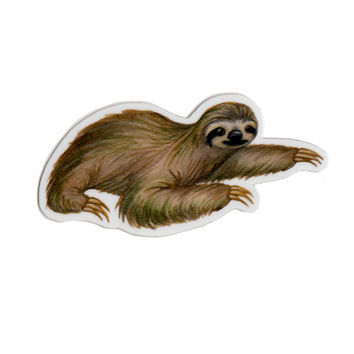 Sloth Wildlife Magnet