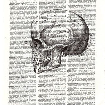 Black And White Skull Print On Upcycled Dictionary Print
